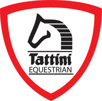 tattini-equest-logo